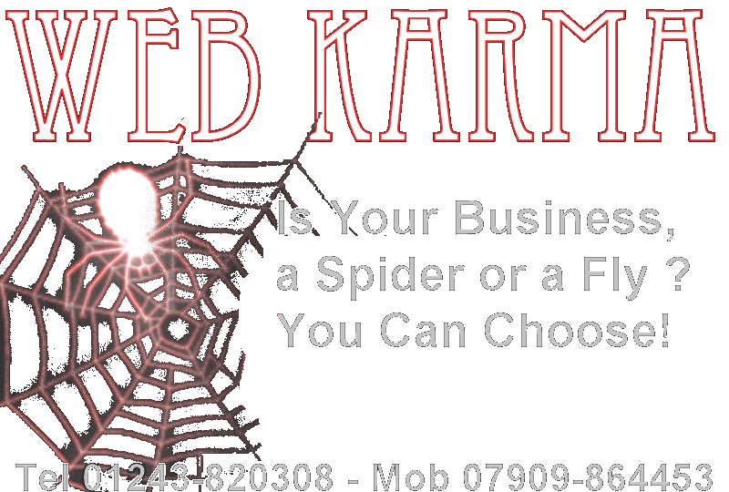 Spider in a web representing the karma of businesses on the web. They can be spiders or flies, predator or prey.